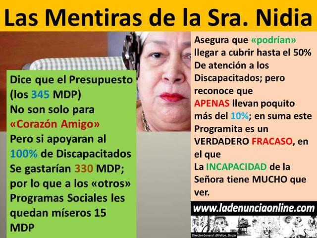 #ElCartelDeLaDenuncia #LasMentirasDeNidia