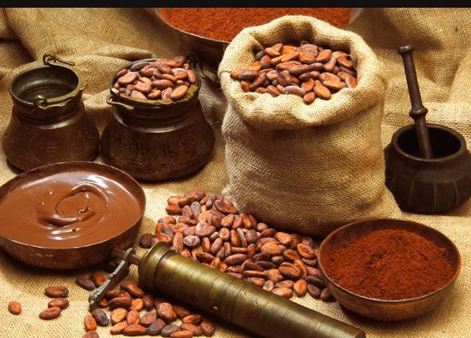 Resultado de imagen para festival chocolate cacao tabasco 2017